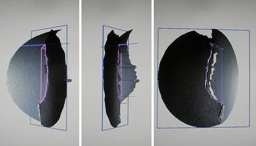 韦林内窥镜三维立体测量的点云图验证