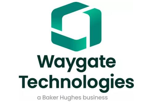进口工业内窥镜厂家Waygate Technologies